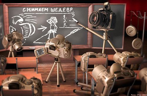 Основы фотографирования
